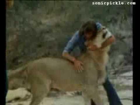 Christian The Lion's Motivational Story.